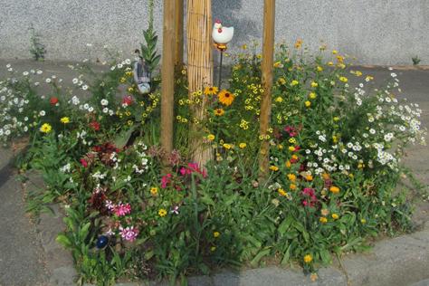 Concours de fleurissement