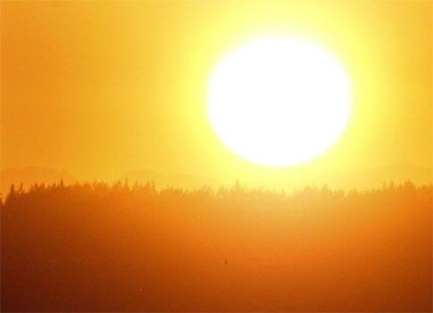 Fortes chaleurs : prenons nos précautions - Vigilance canicule