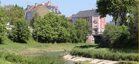 Mulhouse Diagonales : Marché