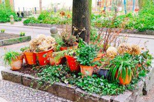 Permis de végétaliser à Mulhouse