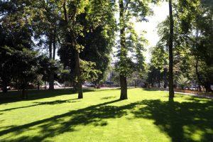Parc Steinbach à Mulhouse