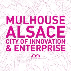 Stratégie de développement territoriale - Mulhouse Alsace Eco 2020 - FR